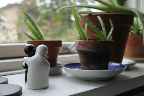 plantes aération
